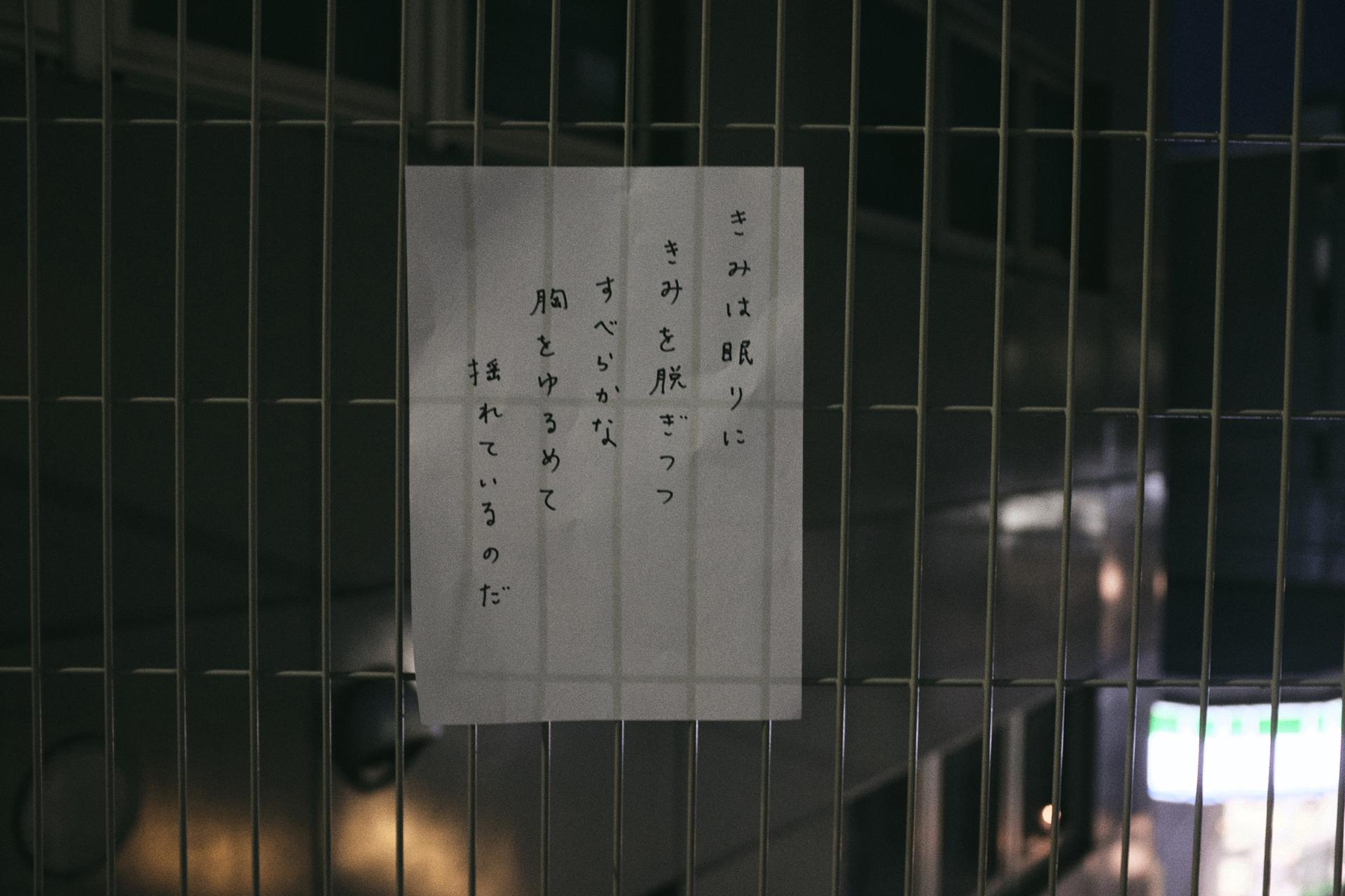 野口あや子 | Ayako Noguchi