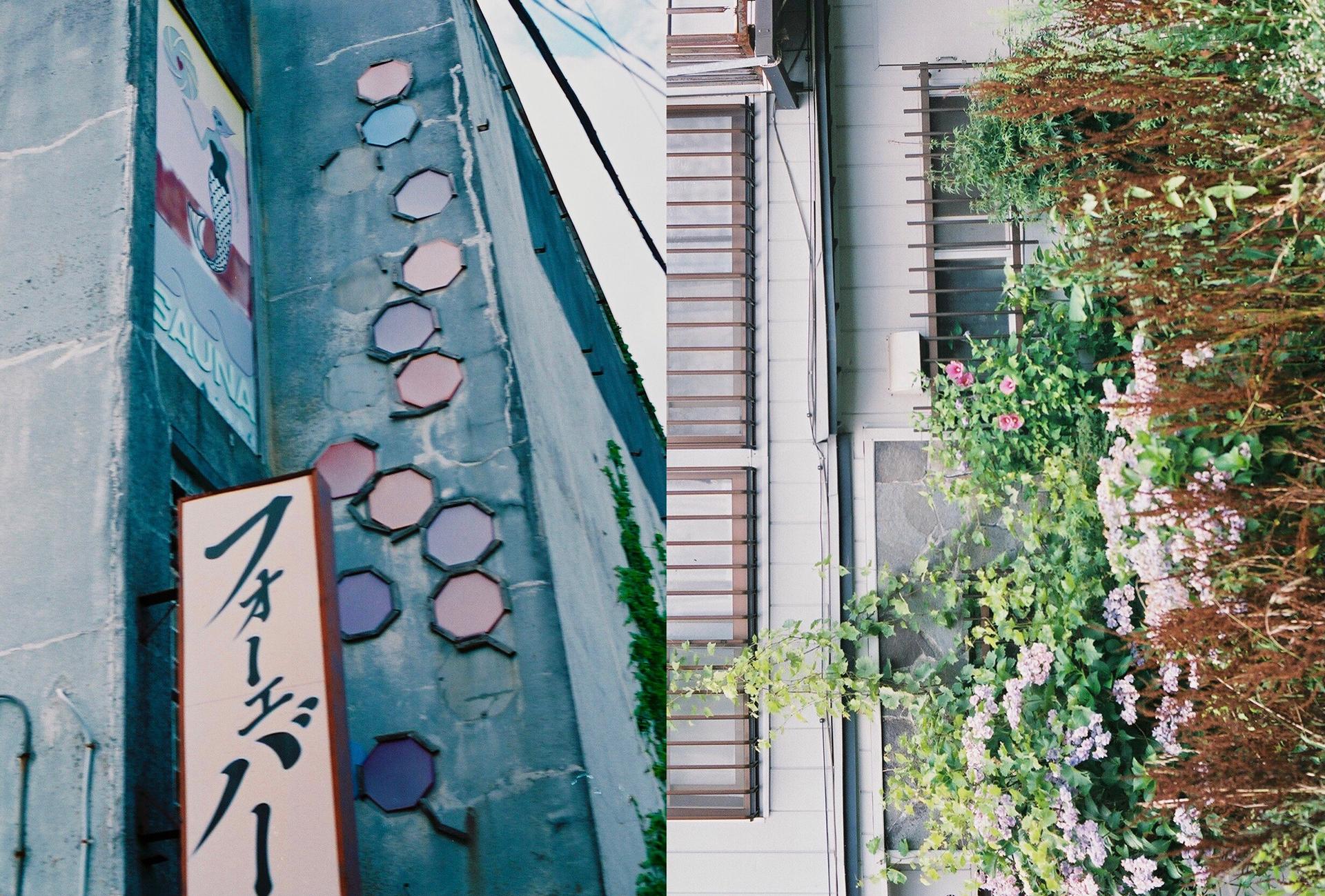 渡邊 リオ | Rio Watanabe