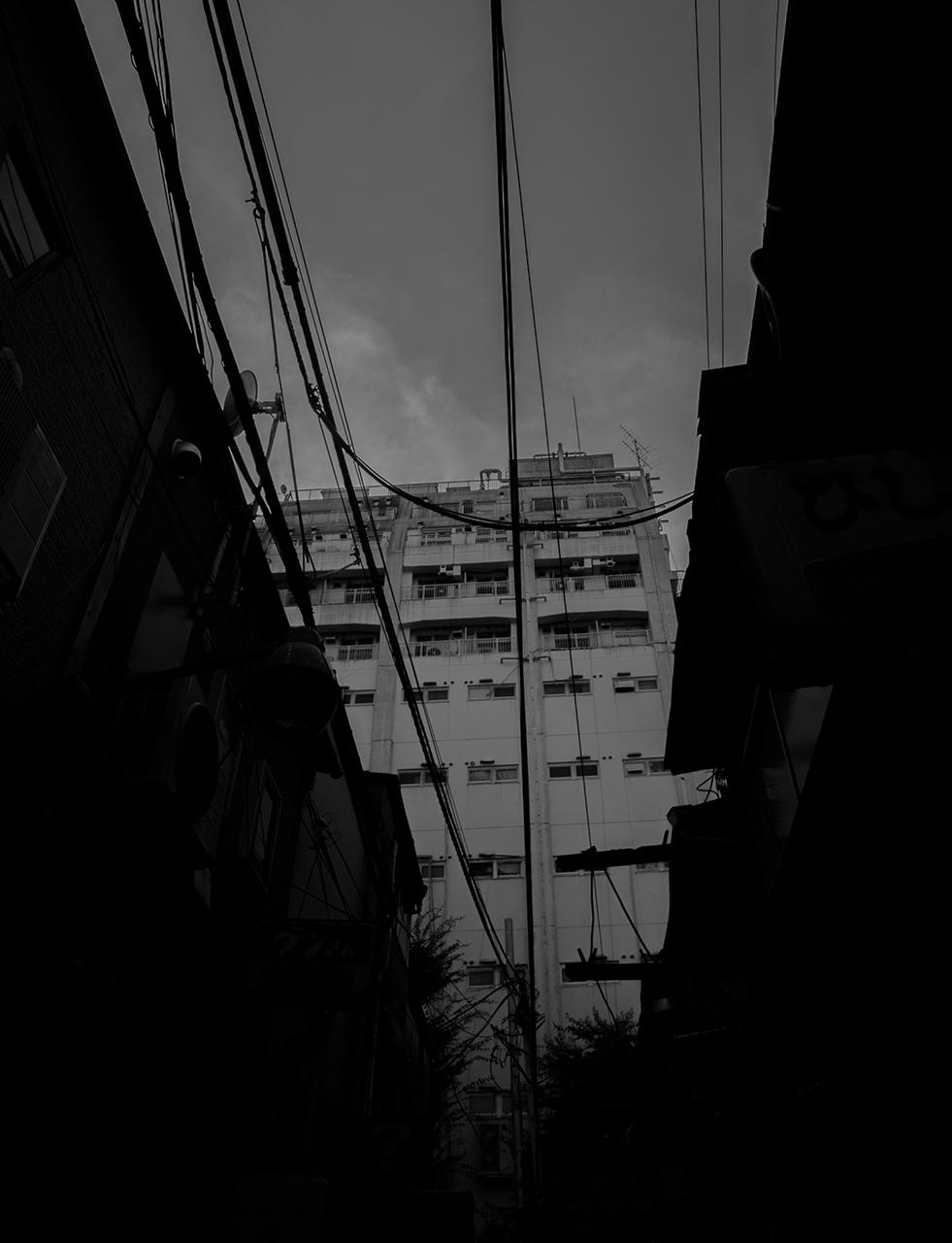 西木 遼馬 | Ryoma Nishiki